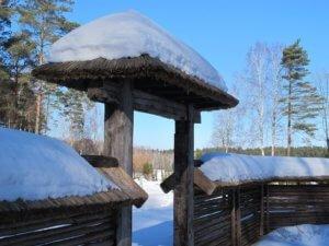 Японский сад зимой
